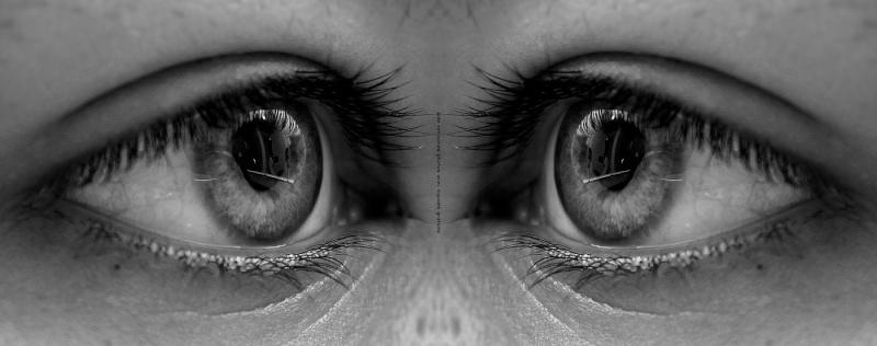 Effet miroir (Photofiltre) 511