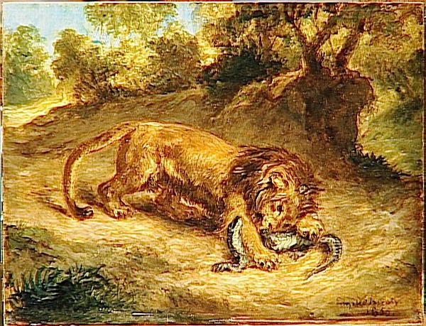 Le LION dans tous ses états 1_1_1251