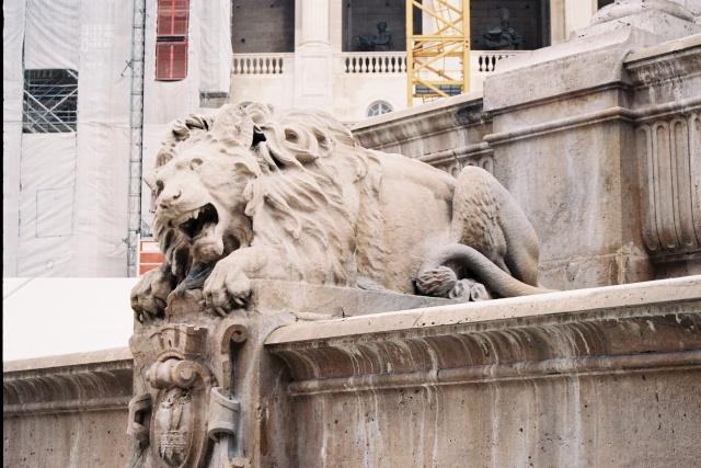 Le LION dans tous ses états 1_1_1267