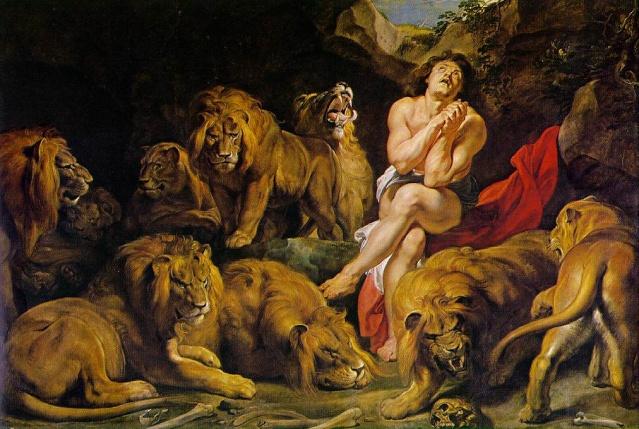 Le LION dans tous ses états 1_1_1373