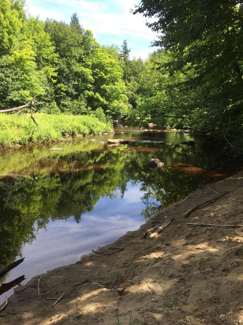 Camping Parc de la rivière Gentilly (Gentilly) Img_3121
