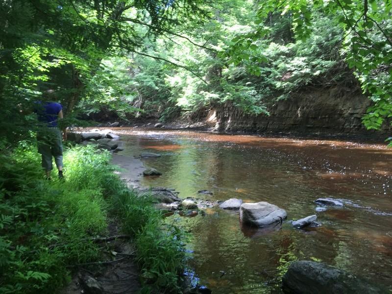 Camping Parc de la rivière Gentilly (Gentilly) Img_3122
