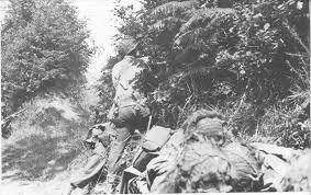 Bataille dans le Bocage Normand - techniques et tactiques Images10