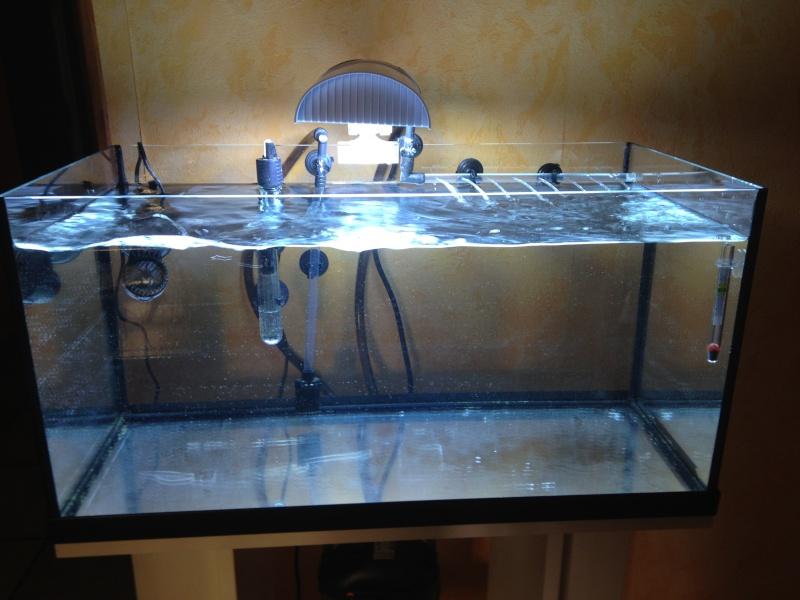 Projet aquarium de Fitzzo Photo_11