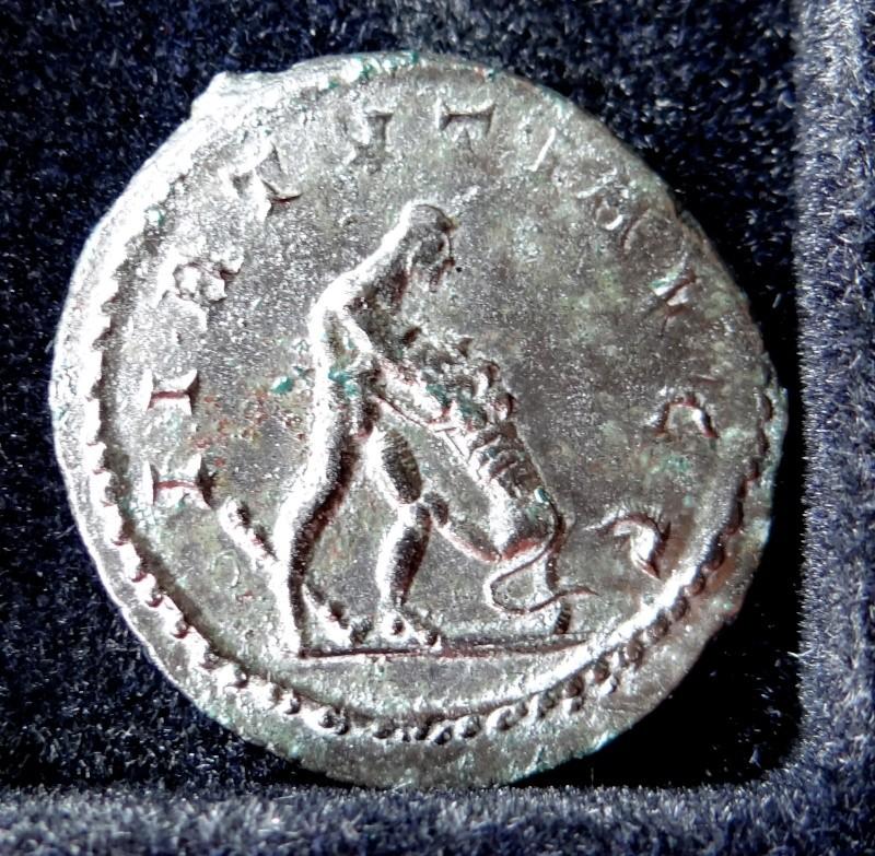 Collection Maximien Hercule .... Esugenos Dsc00013