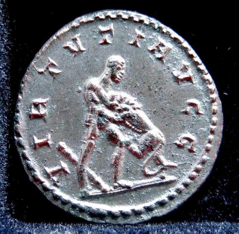 Collection Maximien Hercule .... Esugenos Dsc00015