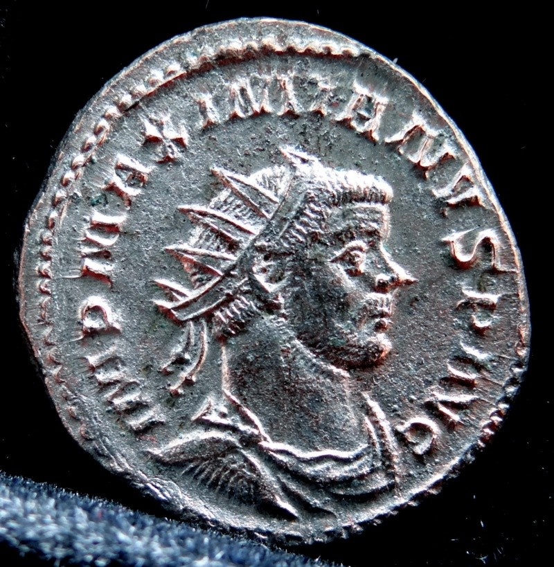 Collection Maximien Hercule .... Esugenos Dsc00016