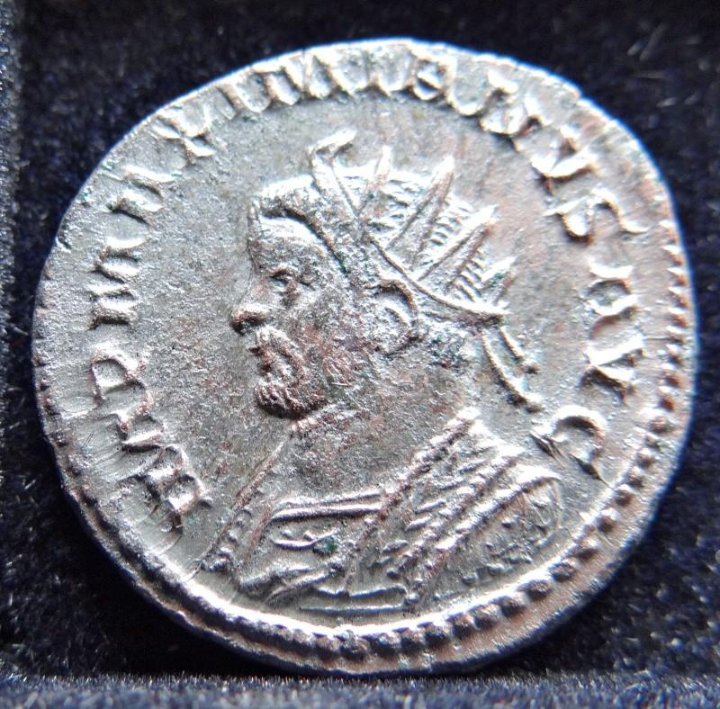 Collection Maximien Hercule .... Esugenos Dsc00020