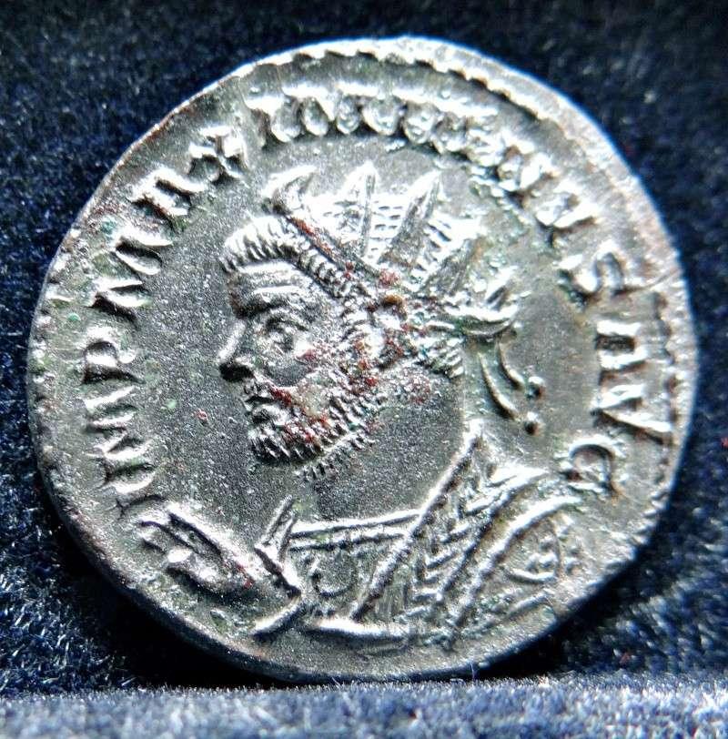 Collection Maximien Hercule .... Esugenos Dsc00027