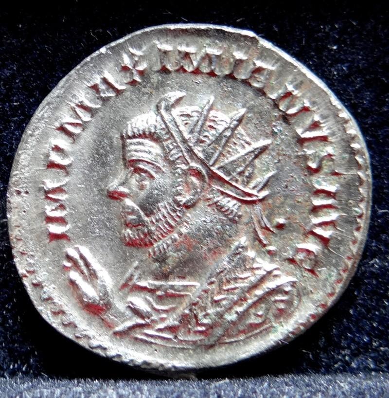 Collection Maximien Hercule .... Esugenos Dsc00036