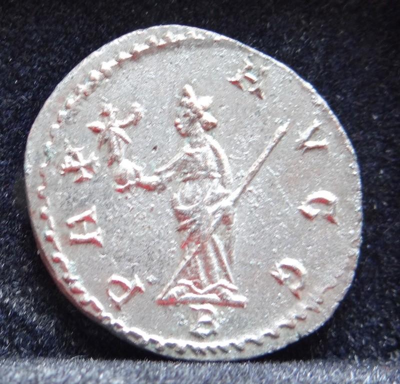 Collection Maximien Hercule .... Esugenos Dsc00110
