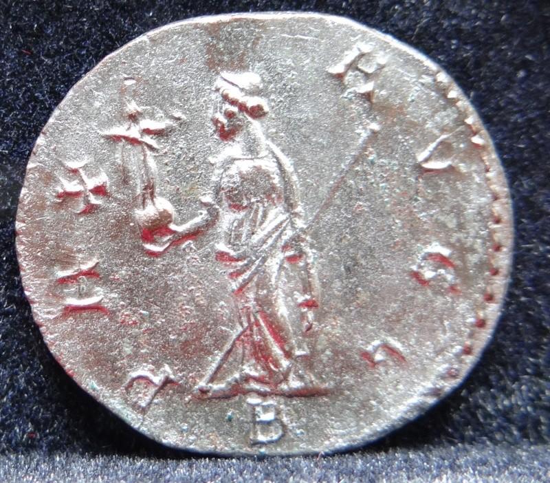 Collection Maximien Hercule .... Esugenos Dsc00112