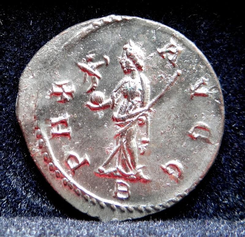 Collection Maximien Hercule .... Esugenos Dsc00114