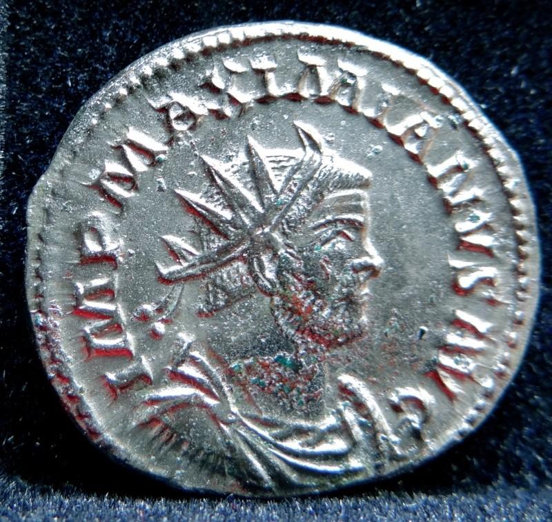 Collection Maximien Hercule .... Esugenos Dsc00115