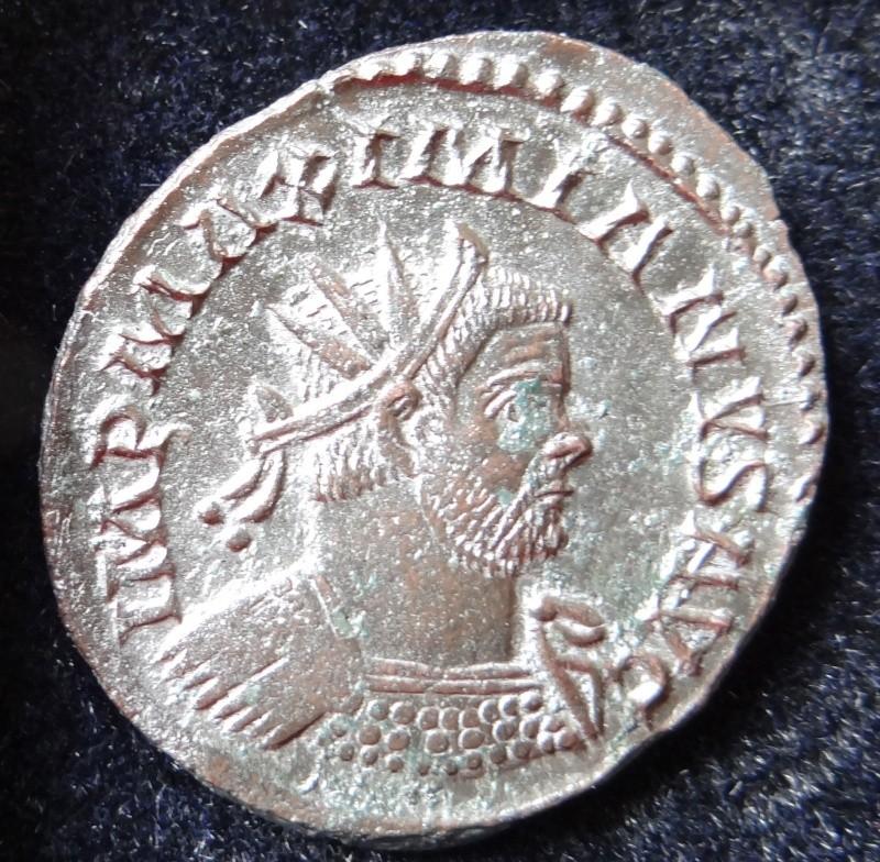 Collection Maximien Hercule .... Esugenos Dsc00122