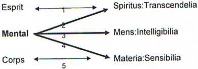 La connaissance et ses niveaux 1_niv_10