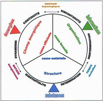 Les bases systémiques de la biologie et de la médecine Mif_lo10