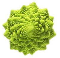 Approche globale ou holistique: systémique, fractale, hologramme, intrication quantique Romane10