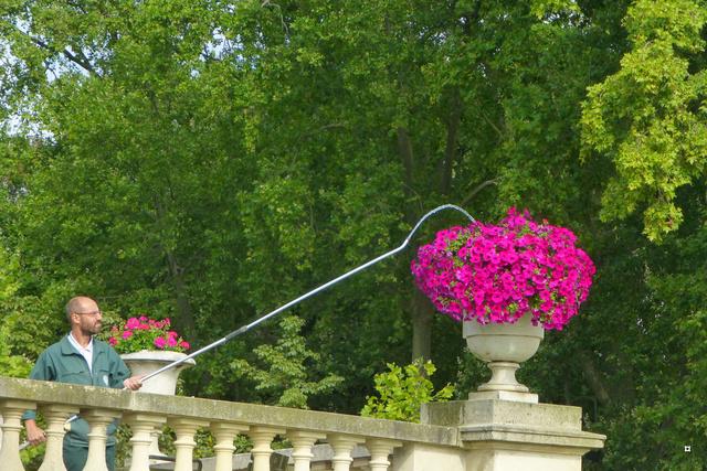 Choses vues dans le jardin du Luxembourg, à Paris - Page 4 Lux_en10
