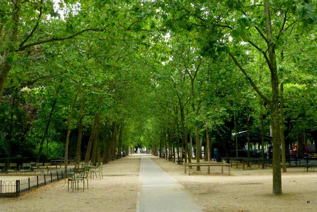 Choses vues dans le jardin du Luxembourg, à Paris - Page 4 Luxemb15