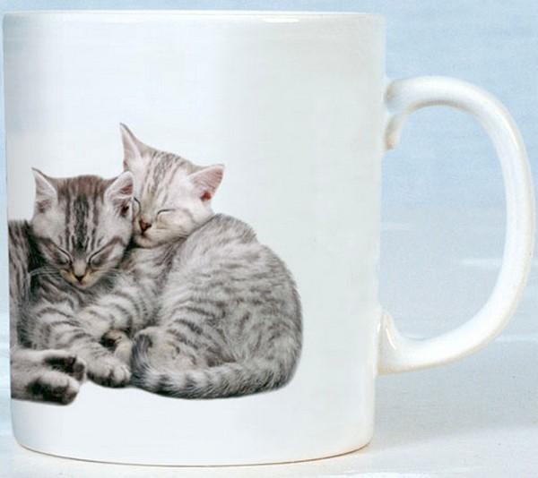 Les chats - Page 12 Cid_d910