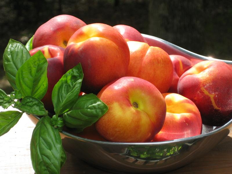 Fleurs,....fruit,.....tout ce qui se mange,...se boit....ou qui vient de la nature.......... - Page 21 Img_3110