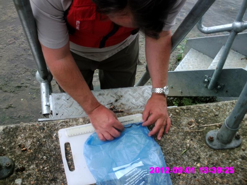 Eel Trap results 2012 - Page 7 Crim0032