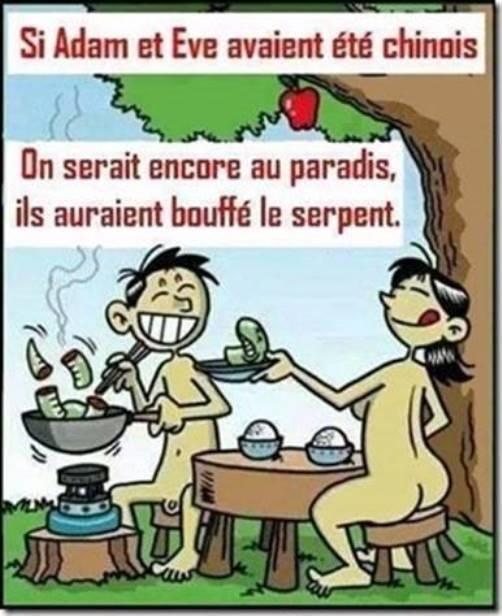 humour - Page 39 Adente10