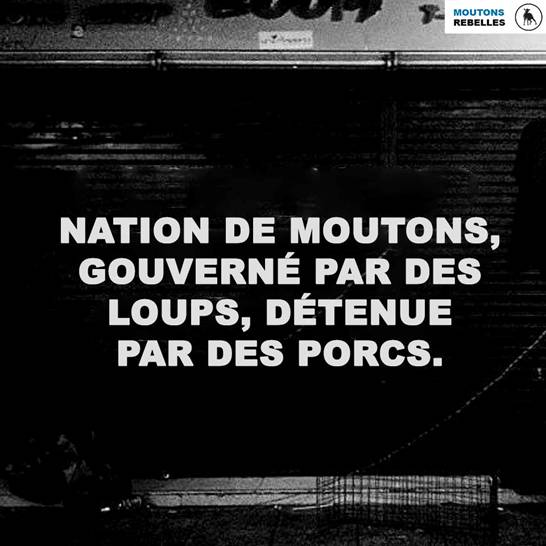 Pauvre France Image027