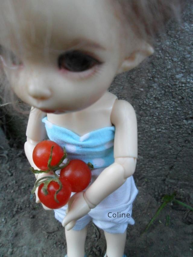 [pkf ante] Tite sortie au jardin, à la fraîche. 2aean611