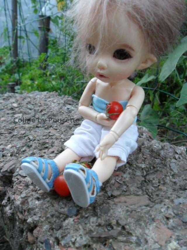 [pkf ante] Tite sortie au jardin, à la fraîche. 7gbxek11