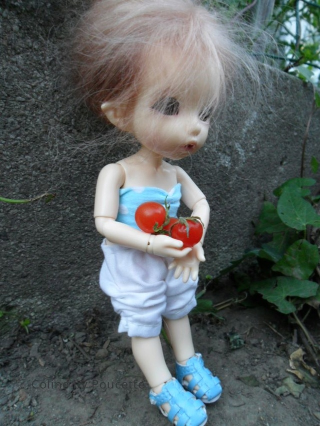 [pkf ante] Tite sortie au jardin, à la fraîche. Fzpqur10