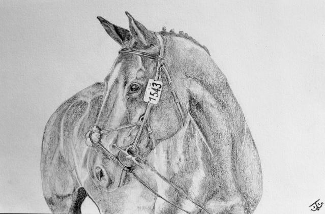 Un autre cheval Igor2_10