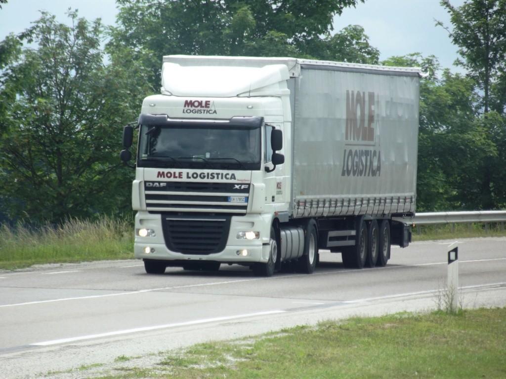 Mole Logistica  (Airasca) Camion14