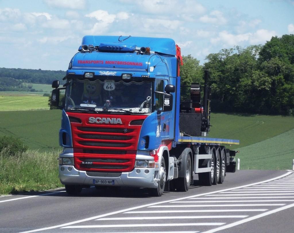 Transports Montbrisonnais (Saint Romain le Puy, 42) Phot1103