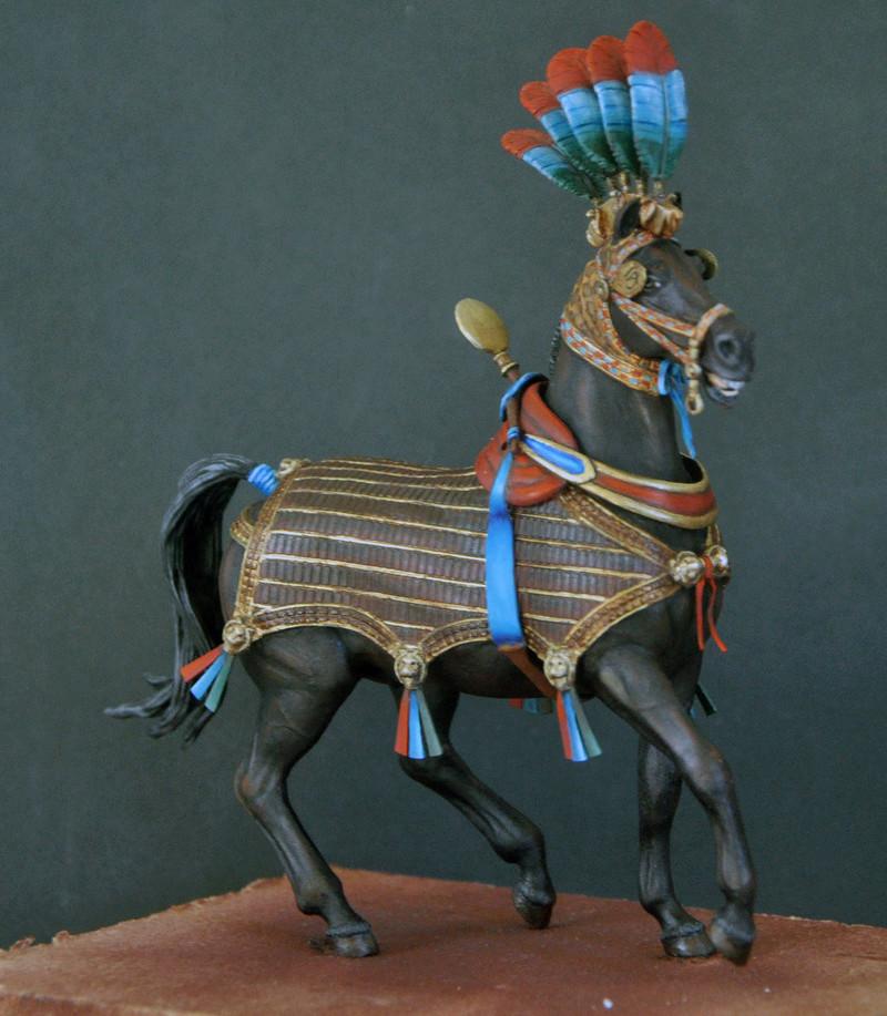 Ramsès II sur son char de guerre- 90 mm Andrea. Fin du premier cheval Dsc_0020