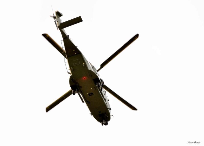 NH90  Pas_7717