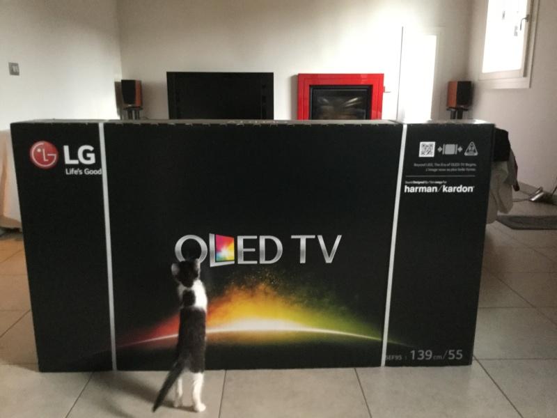 Nuovo LG Oled 55EF950V Image11