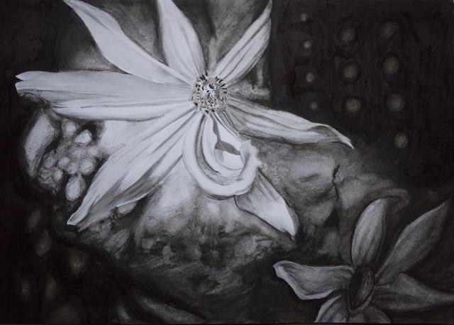 Fleurs  P1040026