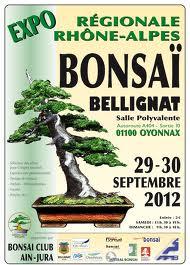 Bellignat (01) les 29 et 30 septembre 2012  12092910