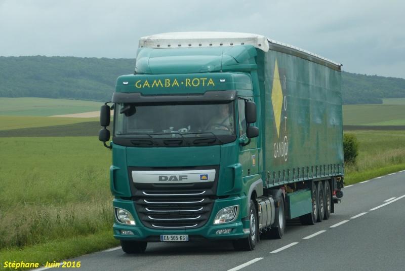 Gamba - Rota (Vendeuvre sur Barse) (10) - Page 6 P1340019