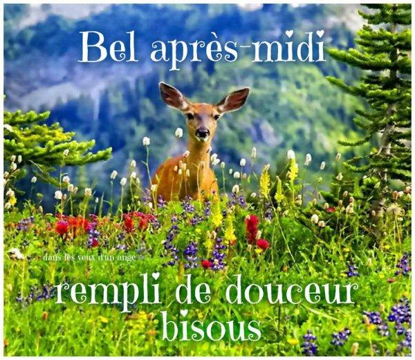bonjour bonsoir du mois d'aout - Page 6 32478610