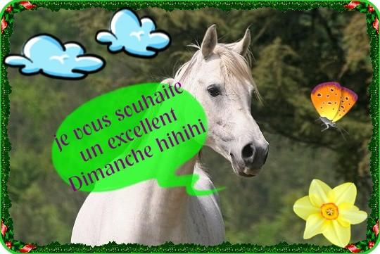 bonjour bonsoir du mois d'aout - Page 8 92ad7610