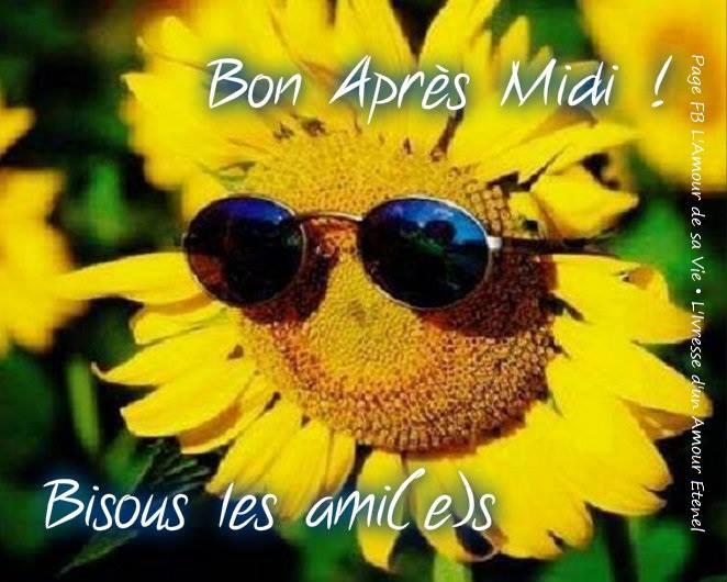 bonjour bonsoir du mois d'aout - Page 8 Bon-ap17