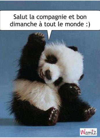 bonjour,bonsoir  du mois de juillet - Page 4 Bon-di10