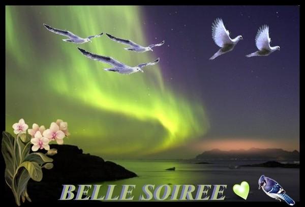 bonjour bonsoir du mois d'aout - Page 7 D24eb010