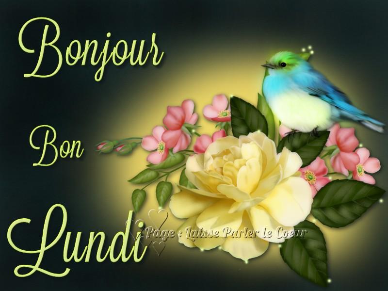 bonjour bonsoir du mois d'aout Lundi_15