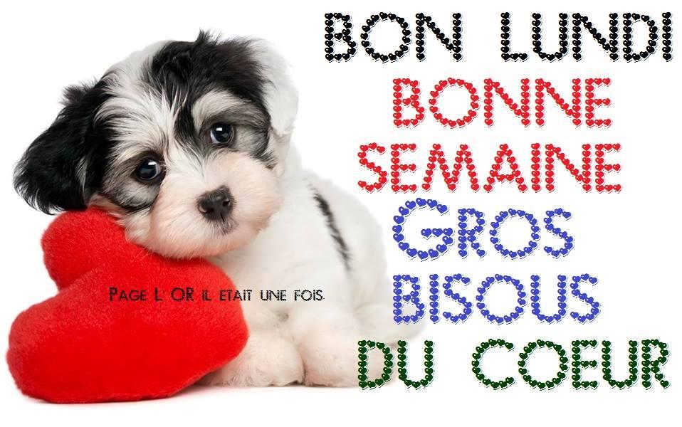 bonjour bonsoir du mois d'aout - Page 6 Lundi_16