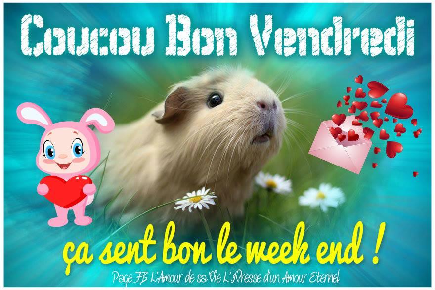 bonjour bonsoir du mois d'aout - Page 9 Vendre14