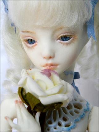 [Azu-Mi's dolls] Elia [Cameo, Marmite Sue Doll] *news* Dscn4513